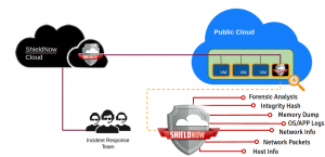 Cloud Security Incident Response Services